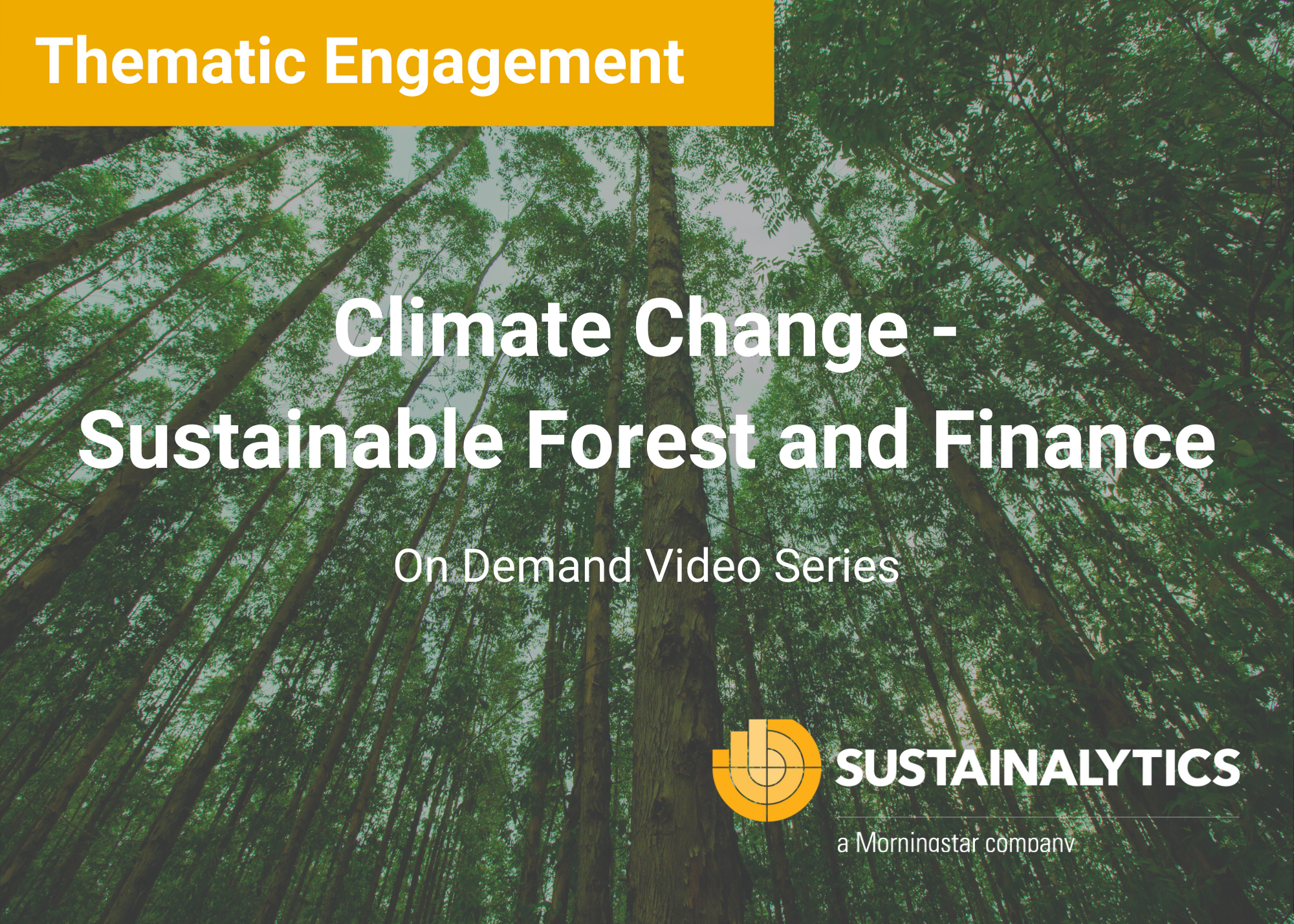 Climate Change - Sustainable Forest and Financials (1)